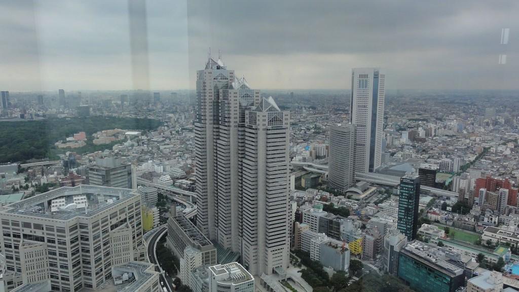 Shinjuku Skyline