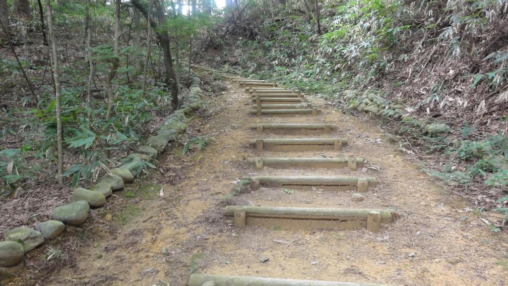 Takayama Forest